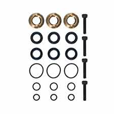 Briggs and Stratton 190636GS KIT, SEAL SETImage
